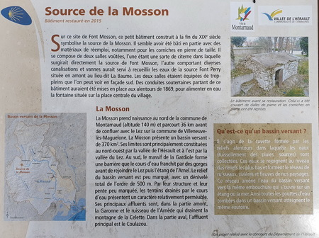 Source de la Mosson